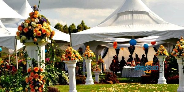 Wedding places in Nairobi Safari Walk