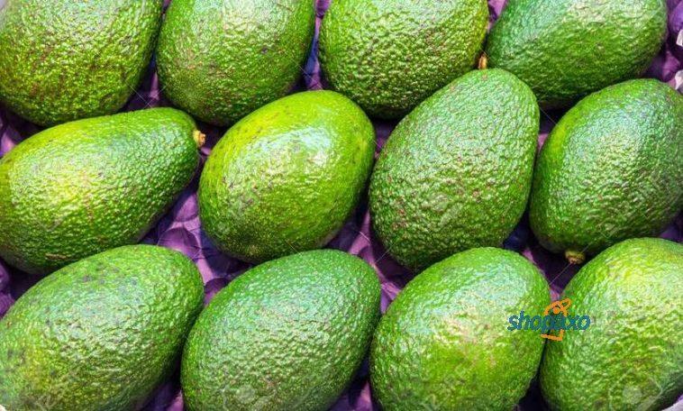 kenya's avocados
